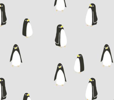 Los pingüinos nos dan una lección magistral de adaptación y aprendizaje