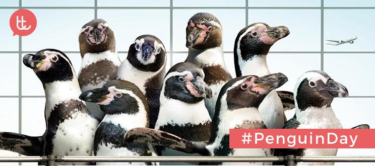10 campañas de publicidad con pingüinos como protagonistas