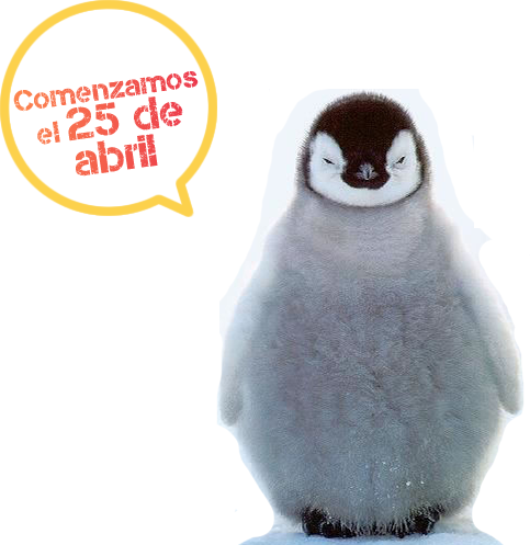 curso-marketing-mascota-TTANDEM