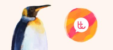 ¡Pingüinos, pingüinos y más pingüinos!