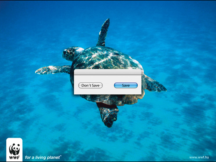 dia-mundial-de-los-oceanos-3