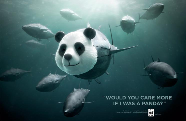 dia-mundial-de-los-oceanos-4