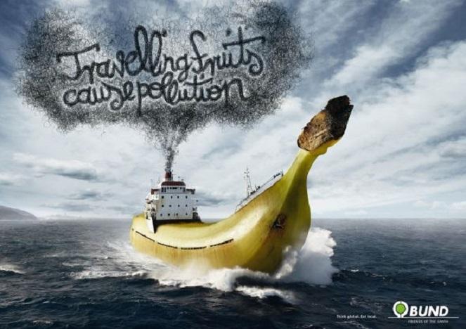 dia-mundial-de-los-oceanos-6