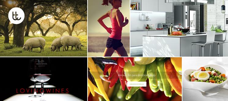 ¿Por qué utilizar imágenes grandes en el diseño web? Presume de sitio web