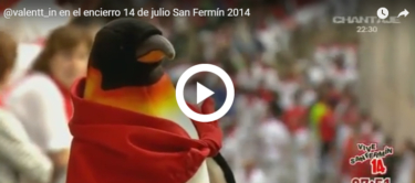 """La """"penguinmania"""" llega a los sanfermines 2014"""
