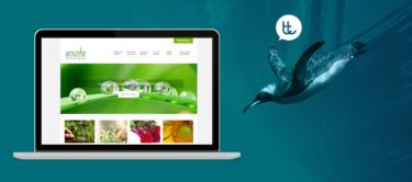 El nuevo sitio web de Anove