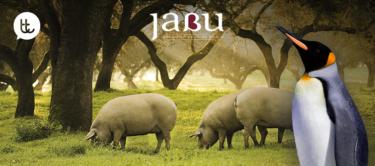 Sitio web de Jabu: una historia que contar y compartir
