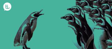que-puede-tu-empresa-aprender-de-los-pinguinos-1