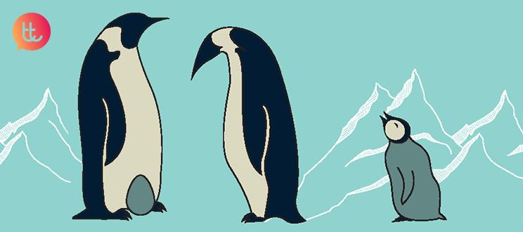 Seamos como los pingüinos… igualitarios y conciliadores